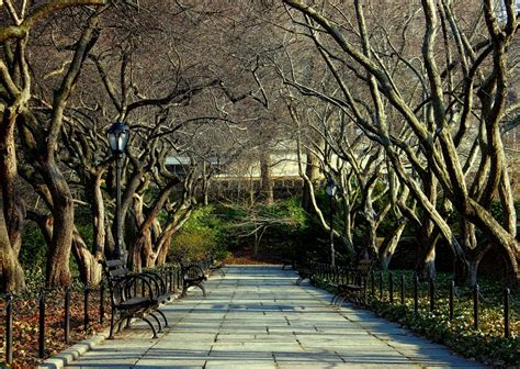 8 Places to Find Peace and Quiet in Central Park (Quiet Zones)